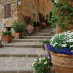 Study Italian in Siena