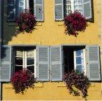 Learn French in Aix-en-Provence